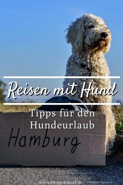 Pin Reisen mit Hund