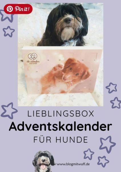 Pin it - Lieblingsbox Adventskalender für Hunde