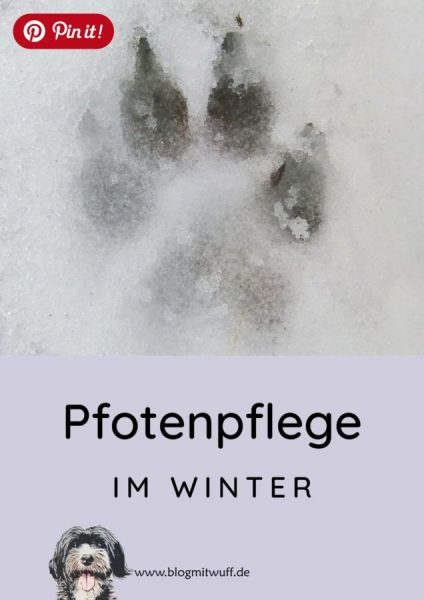 Pin it - Pfotenpflege bei Hunden im Winter