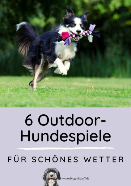 Pin zu 6 Outdoor Hundespiele