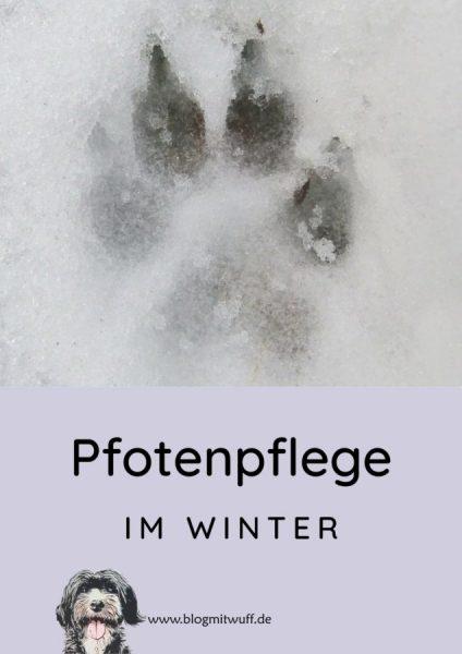 Pin zu Pfotenpflege im Winter