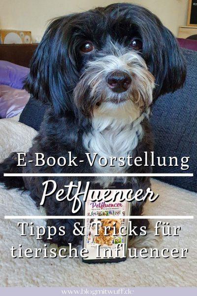 Pin2 Ebook Petfluencer Tipps und Tricks Pablo