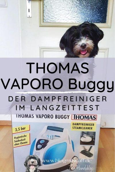 Titelbild THOMAS VAPORO Buggy