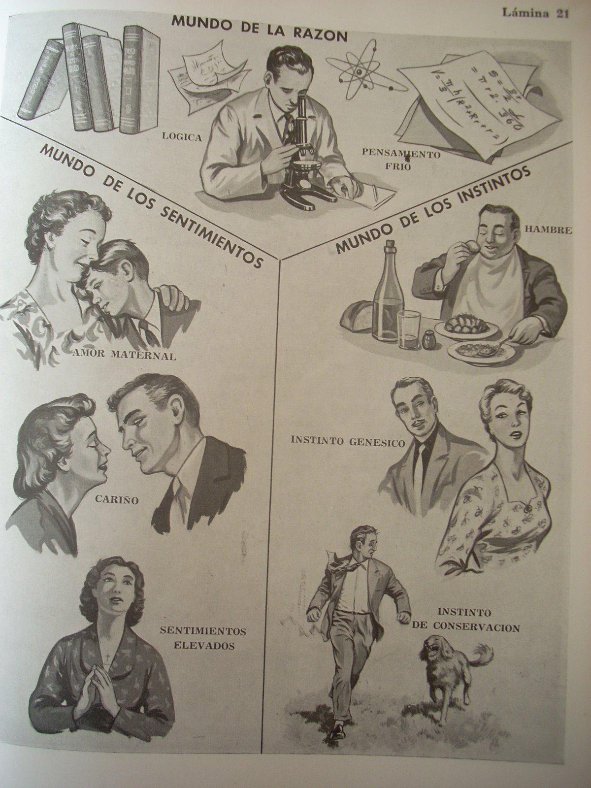 Enfermedades trastornos vida conyugal machismo