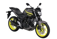 Warna Yamaha MT-25 Matte Grey