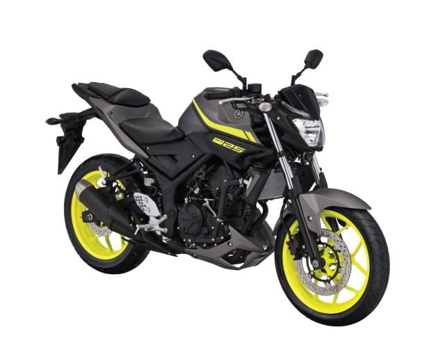 Warna Yamaha MT-25 Matte Grey