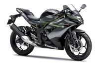 Kawasaki Ninja 250SL Warna Abu-abu
