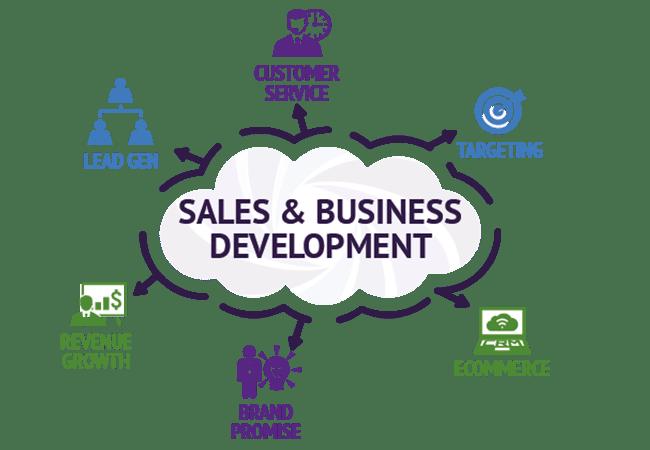 Sales dan Business Development