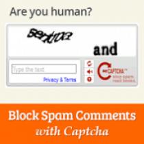avoid+wordpress+comment+spam+using+captcha