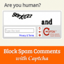 avoid+wordpress+comment+spam+using+captcha