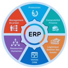 Modules de Progiciel de Gestion intégrée et ERP