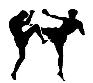 Figures kickboxing