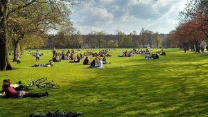 Edinburgh Meadows in the summertime