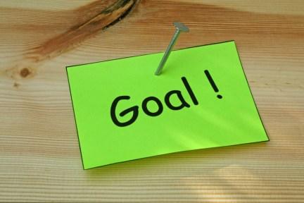 shot term goal blogging