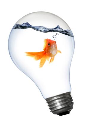 Business Ideas for Entrepreneurs