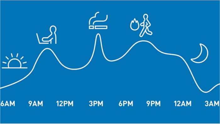 Variazioni della Pressione Arteriosa nel Corso della Giornata