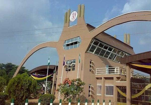 The Most Popular ways Undergraduates in Nigeria Make Money 1