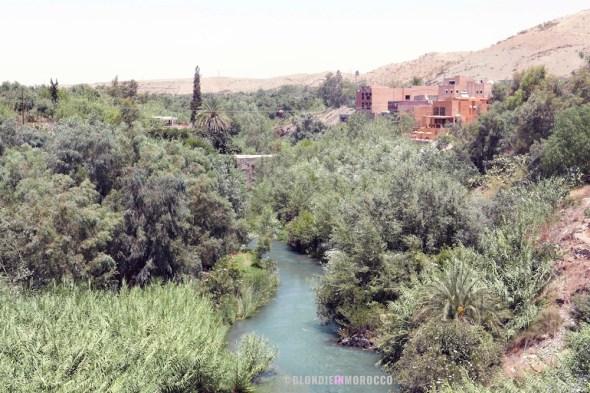 Lalla Takerkoust oasis