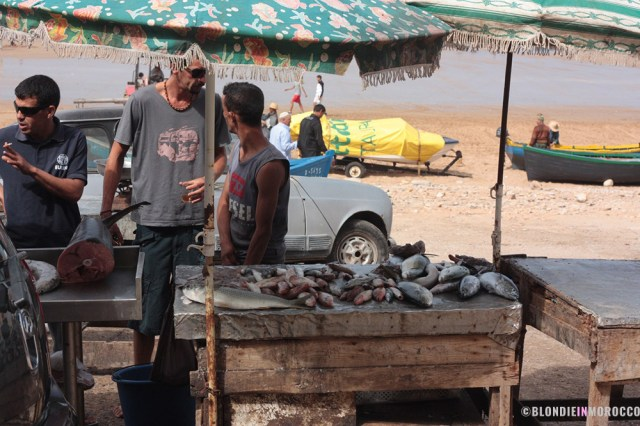 fish, taghazout, fishemen, beach, vendor