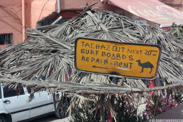 surfing, taghazout, poster, camel