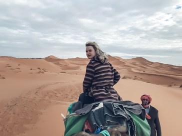 desert-camel-blondie-trip