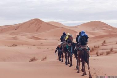 merzouga-camel-ride-dunes