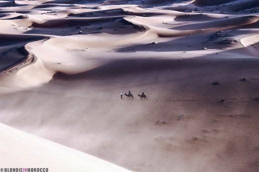 sand dunes morocco desert wind
