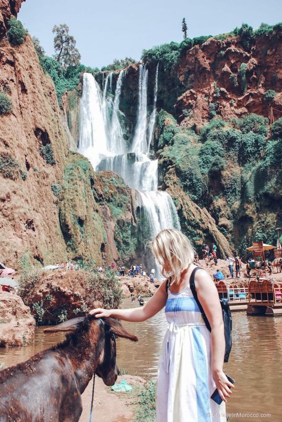 ouzoud, waterfall, morocco, mountain, view, donkey, girl