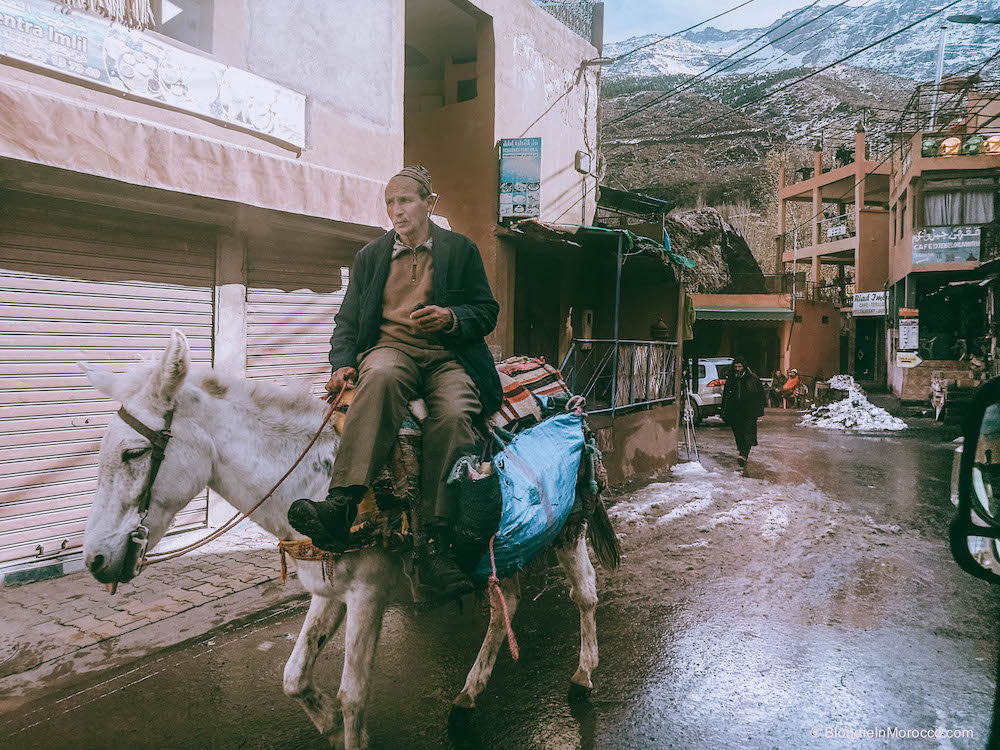 Imlil Morocco mountains High Atlas snow hiking mules