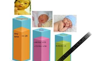 newborn-bilirubin-levels-chart