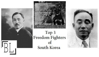 Freedom Fighters of South Korea