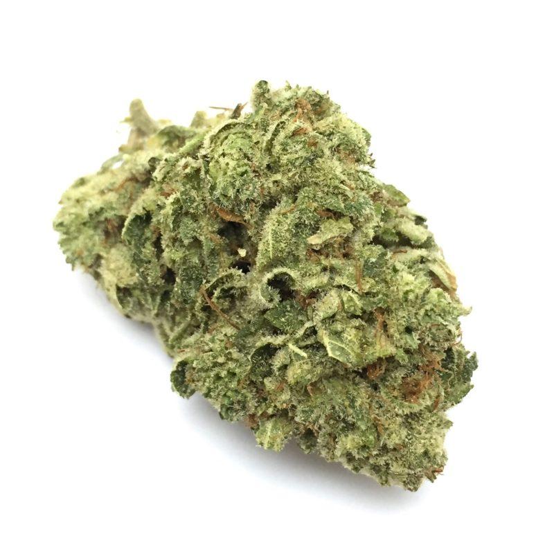 Buy Gorilla Glue Weed Online