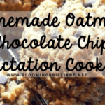 Homemade Oatmeal Chocolate Chip Lactation Cookies