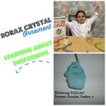 Science Sunday – Borax Crystal Ornament