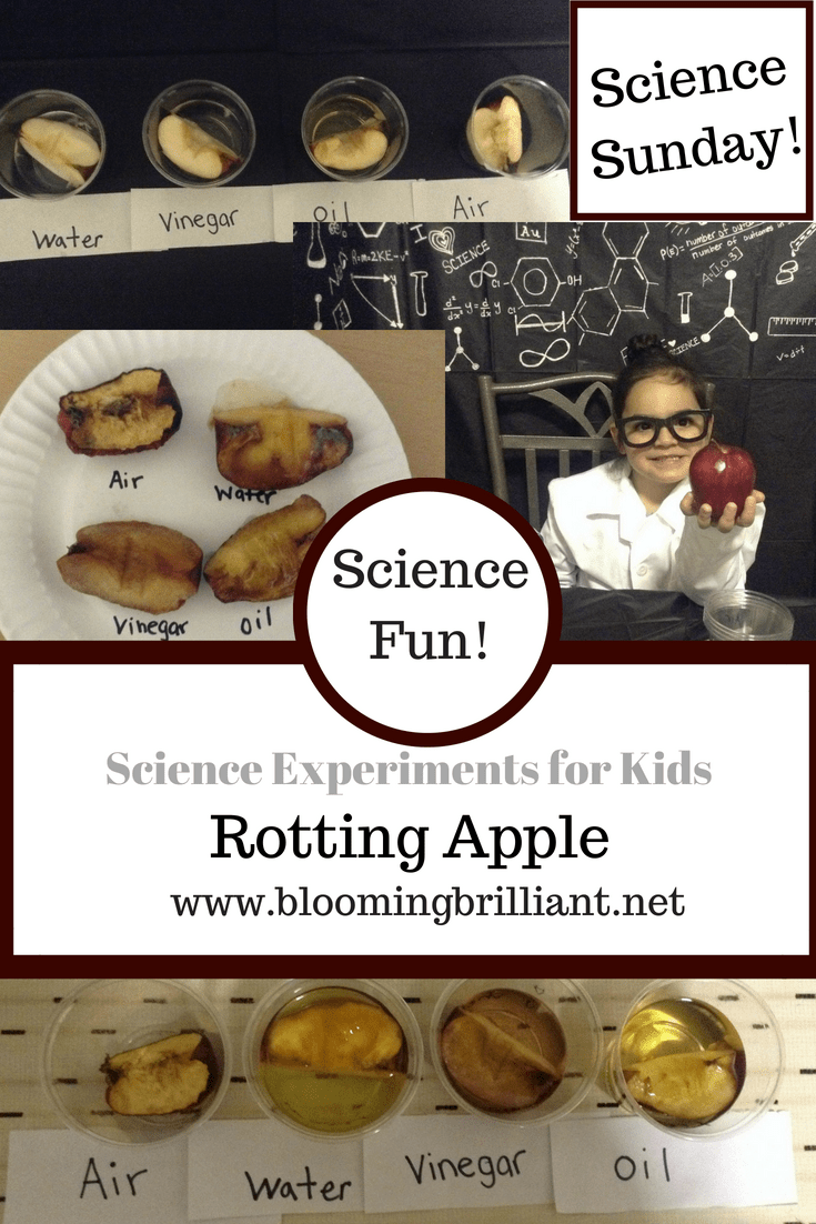 We are conducting the rotting apple experiment and exploring the world of DECAY and how decay changes when it is exposed to different environments.