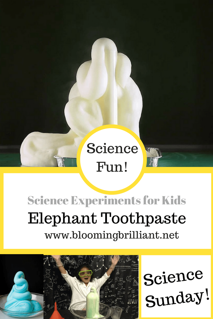 Simple Science Experiments Elephant Toothpaste