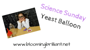 Science Sunday- Yeast Balloon