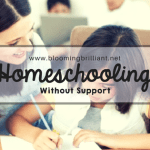 Homeschooling without Support
