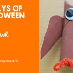 Halloween Owl Craft