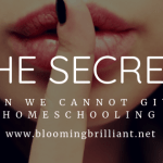 The Secret Reason We Cannot Give Up Homeschooling