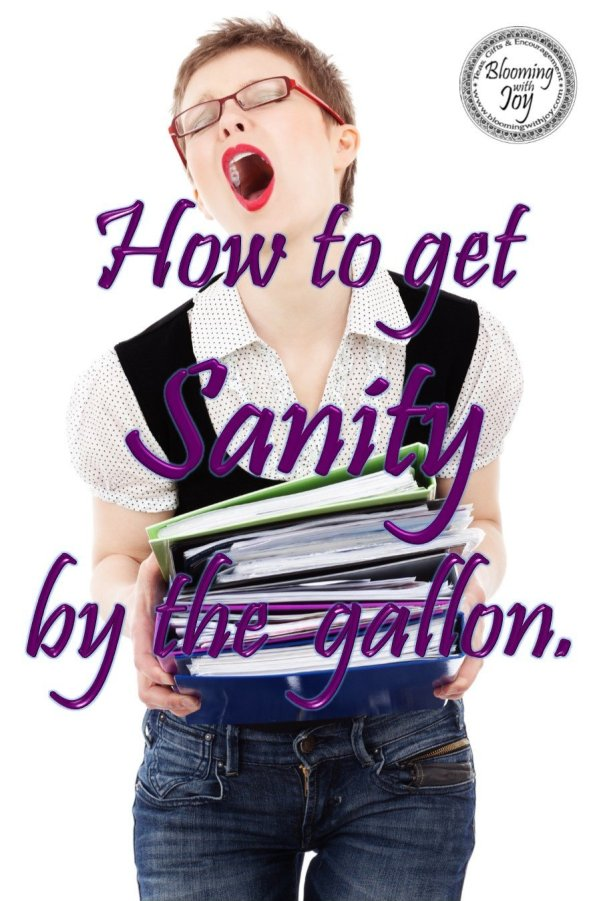 how to get sanity