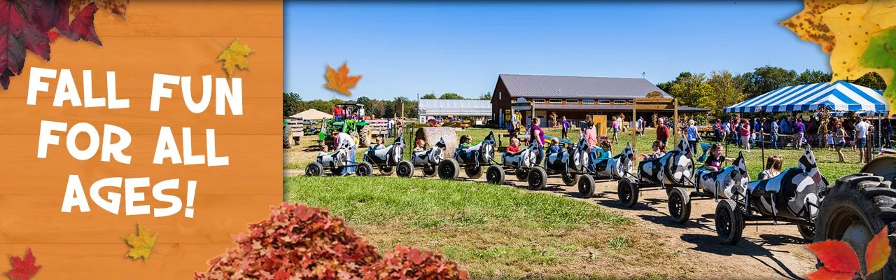 Fall fun activities for little ones at Blooms and Berries in Loveland, Ohio.