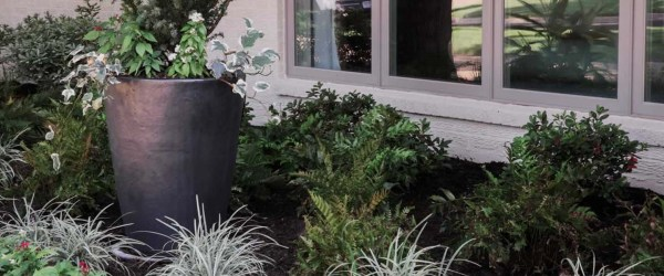 landscaping services fort worth