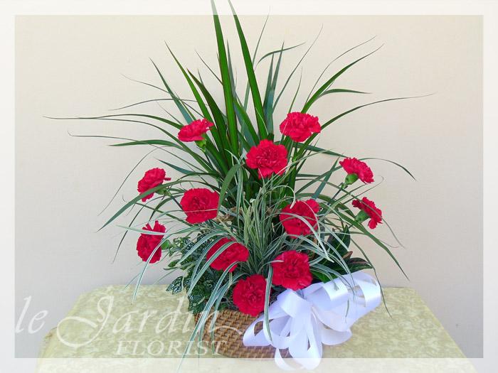 Blooms Nation Florist Palm Beach  5614607109