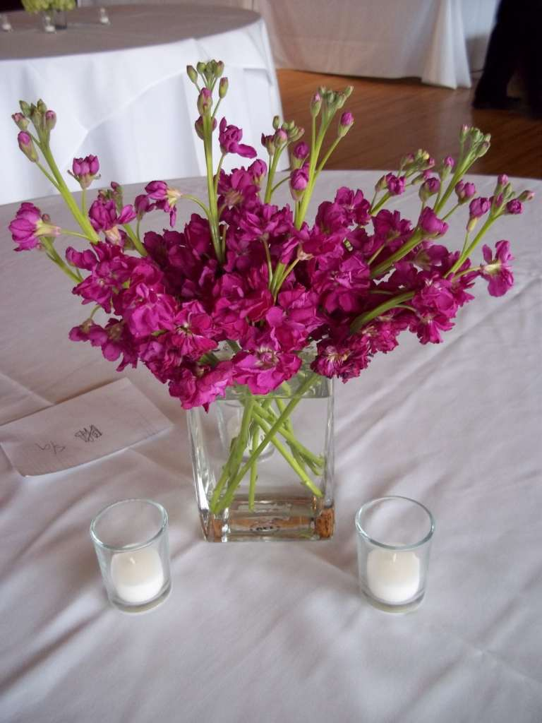 Stock (flower) in a rectangle vase
