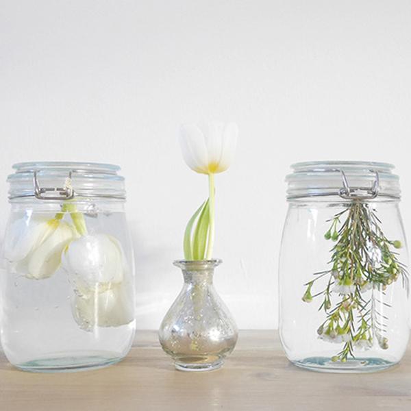 Blumen fr die Ewigkeit  Bloomy Blog  Blumentipps und mehr