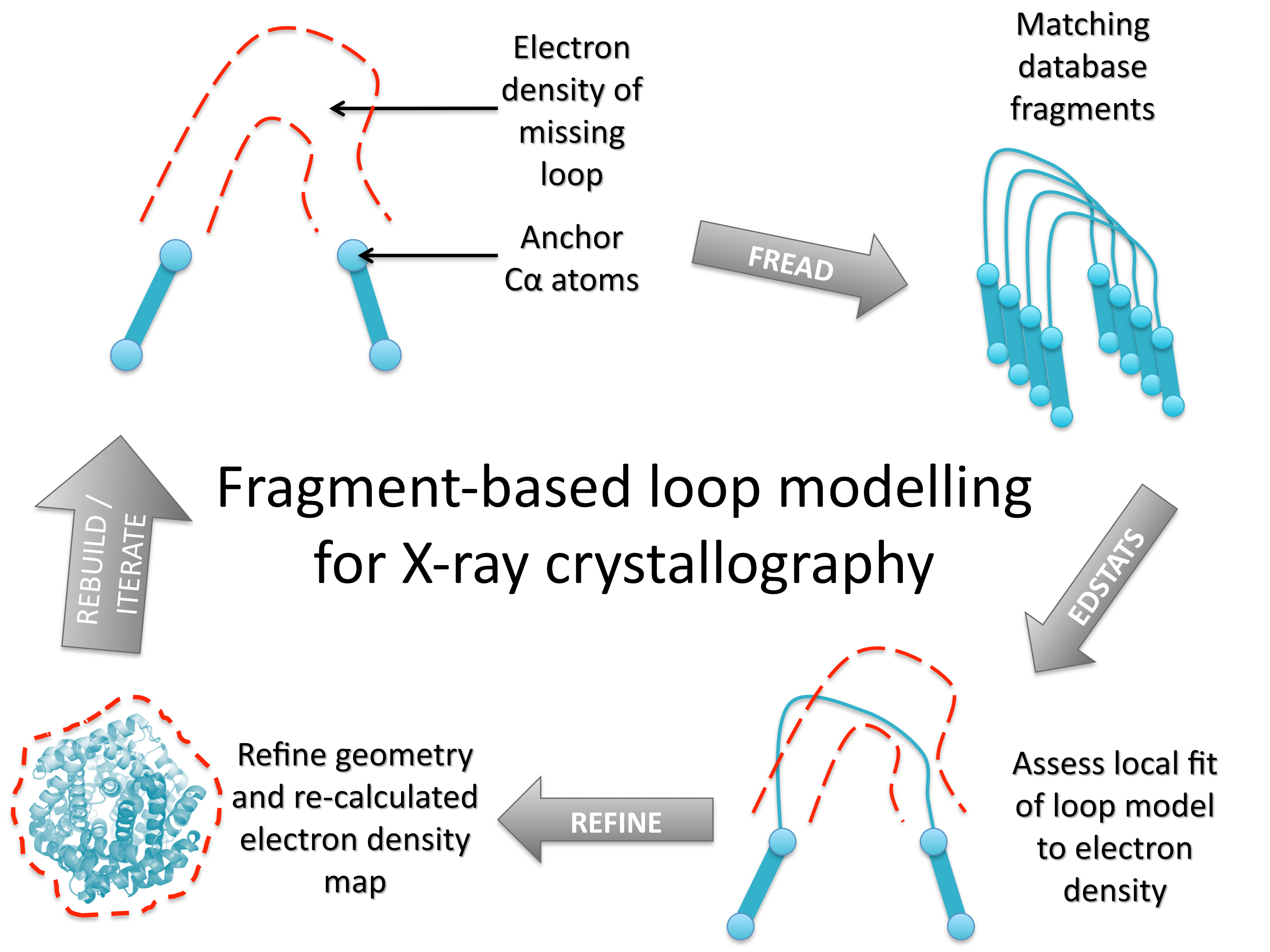 Fragment Based Loop Modelling Pipeline For X Ray