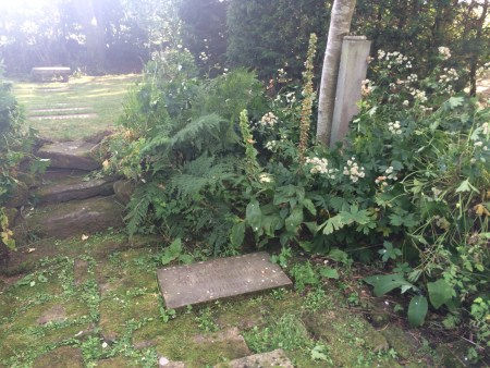 Spiritual woodland garden