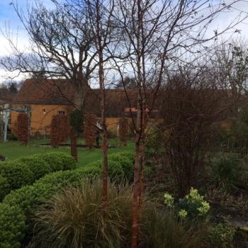 winter structure Shepherd House Garden East Lothian