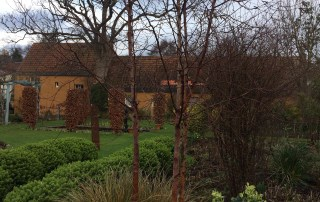 Shepherd House Garden in East Lothian is brimming with winter structure